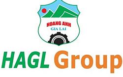 Hoàng Anh Gia Lai Group
